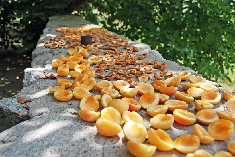 Ordubad - Shora Cheshme Restaurant - Apricots