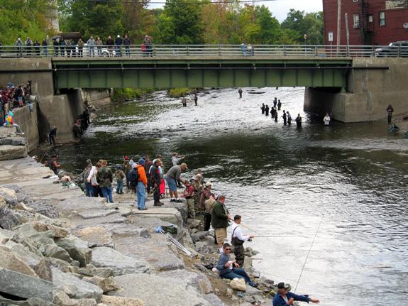 Fishing the Salmon River - Pulaski