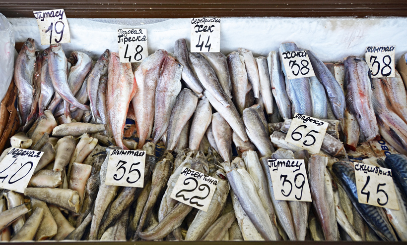 Chișinău Central Market - Fish