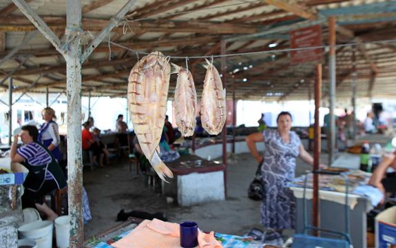 Vylkove - Market - Fish