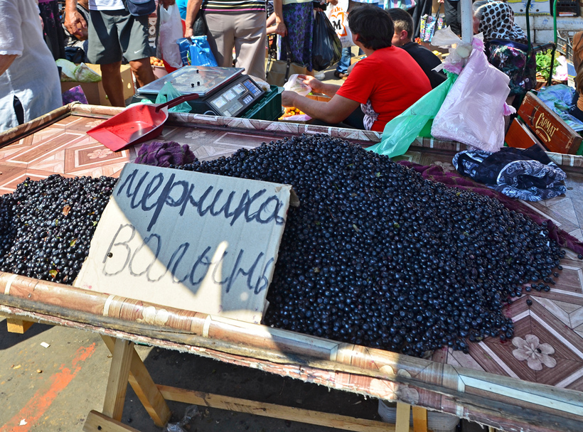 Ukraine - Odessa - Privoz Market - Blueberries