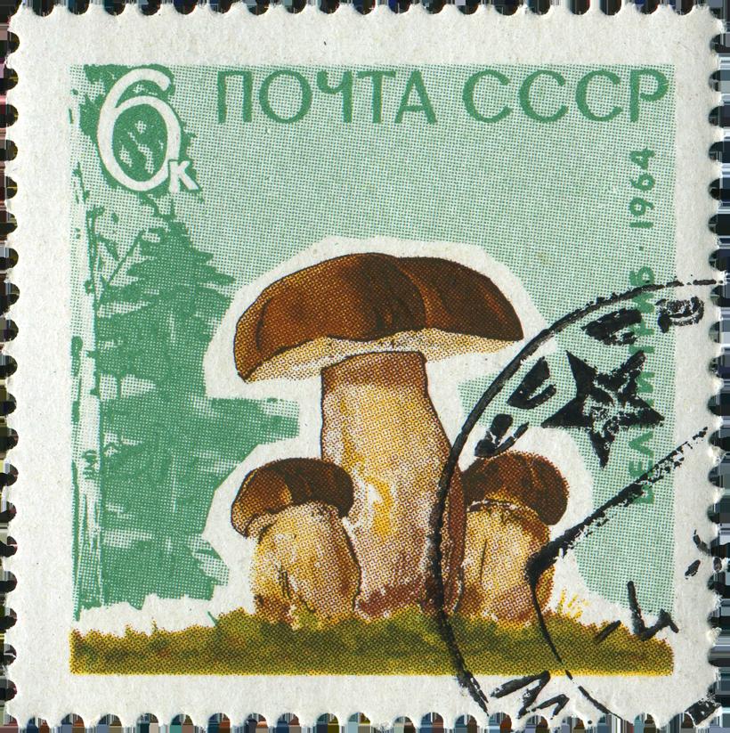 Soviet Stamp - Porcini Mushrooms