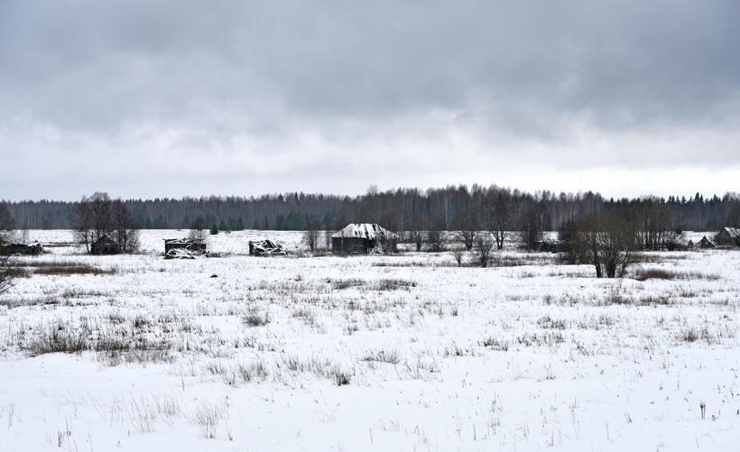 Lake Lacha - Naumovskaya