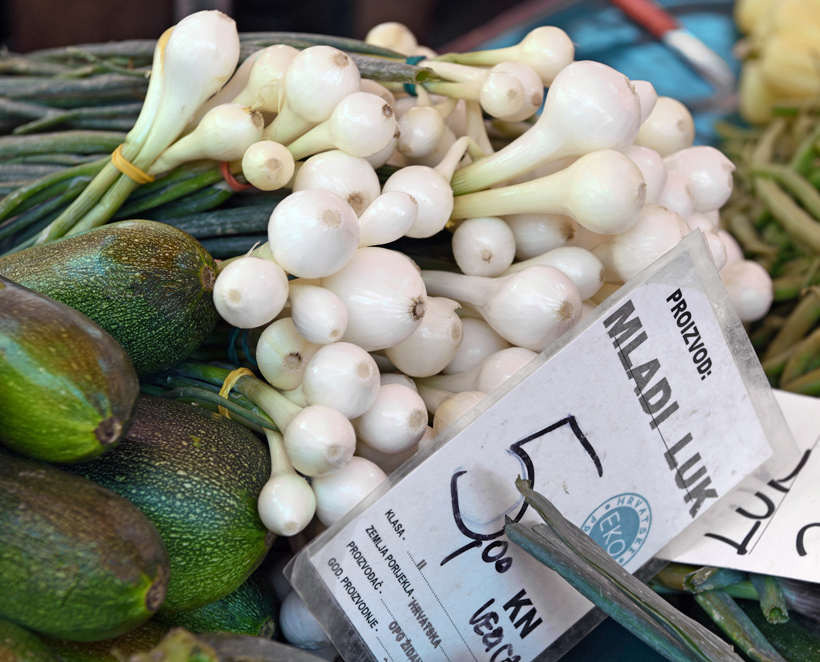 Zagreb - Dolac Market - Spring Onions