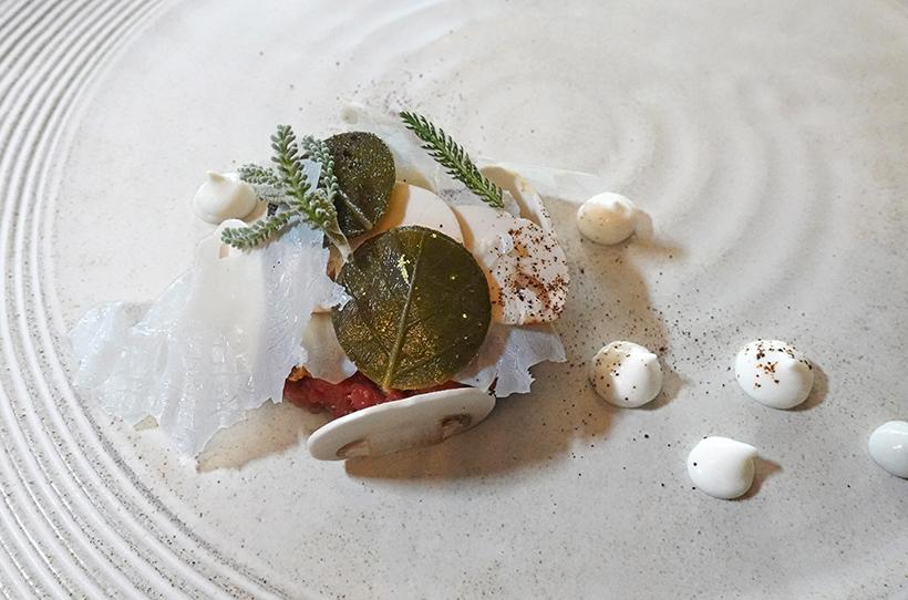 Budapest - Onyx Restaurant - Water Buffalo Tartare, Shallot, Mushroom